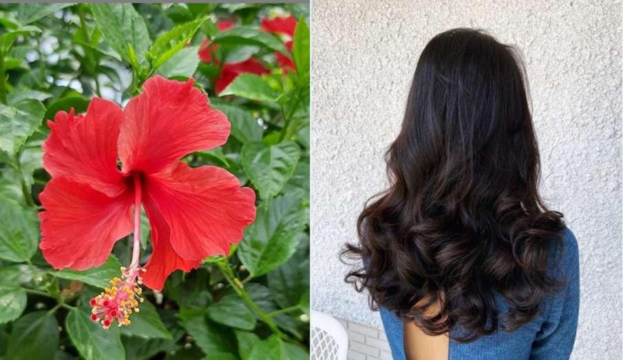 बालों को मजबूत करने के घरेलू उपाय, home remedies for hair- India TV Hindi