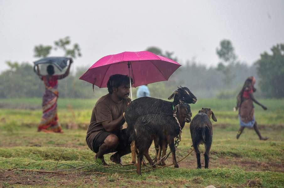 heavy rainfall predicted in balaghat tikamgarh damoh sagar madhya pradesh । इन चार जिलों में अत्यधिक- India TV Hindi
