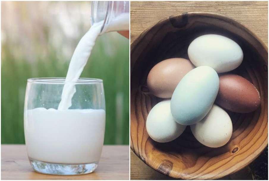 Milk and Egg- India TV Hindi