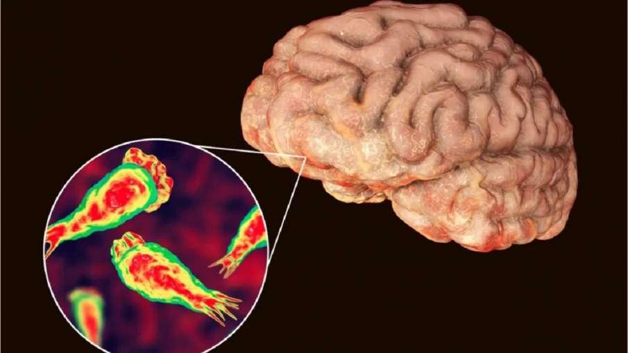 brain eating amoeba- India TV Hindi