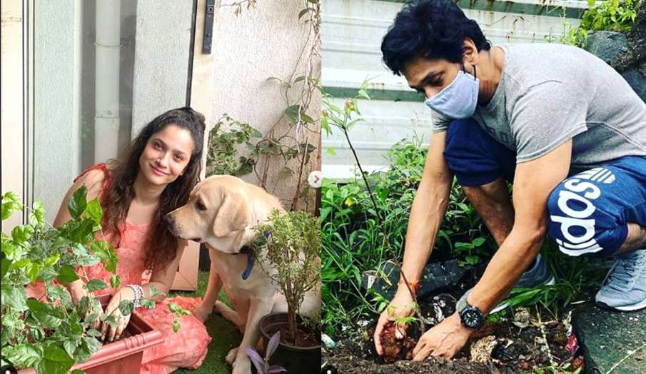 ankita lokhande mahesh shetty sushant plants for ssr - India TV Hindi