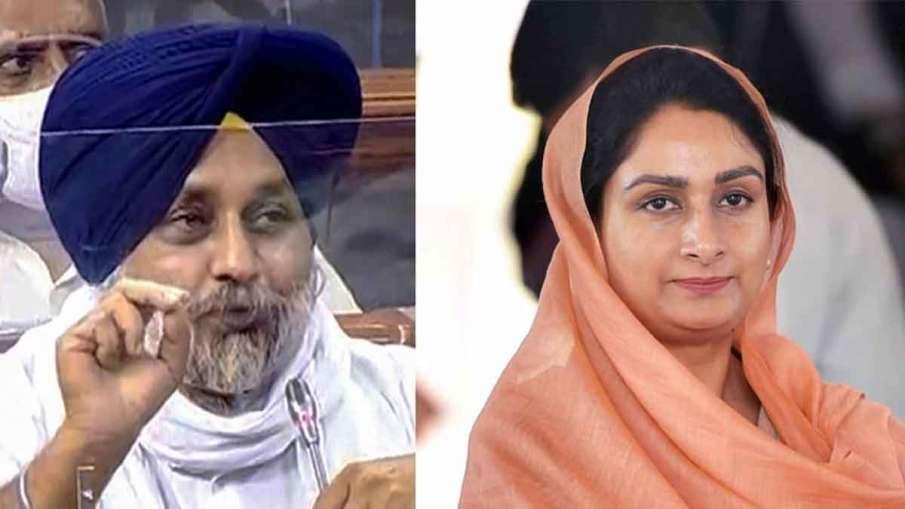 Punjab BJP, Punjab BJP Akali Dal, Shiromani Akali Dal NDA, Shiromani Akali Dal BJP- India TV Hindi