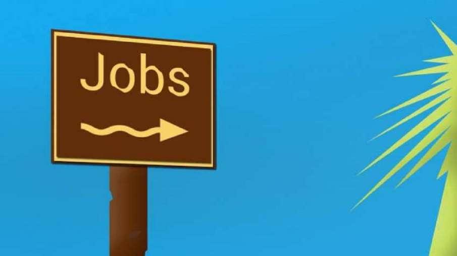 Government Jobs in Goa ten thousand vacancies । इस राज्य में 30 नवंबर के बाद निकलने वाली हैं 30 हजार- India TV Hindi