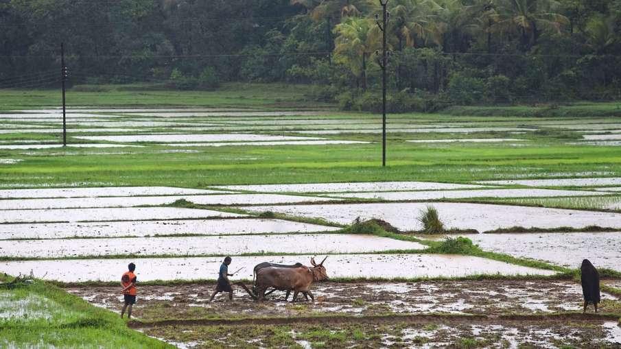 Rahul Gandhi attacks PM Narendra Modi over new agriculture laws । किसानों का जिक्र करते हुए राहुल गा- India TV Hindi