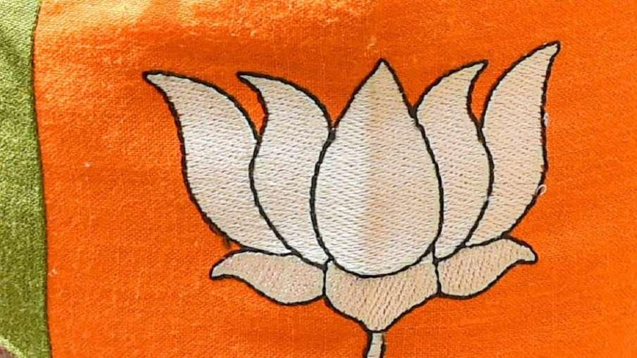 झारखंड में पहली बार दोनों सीटों पर सत्ताधारी गठबंधन आगे, भाजपा पीछे- India TV Hindi