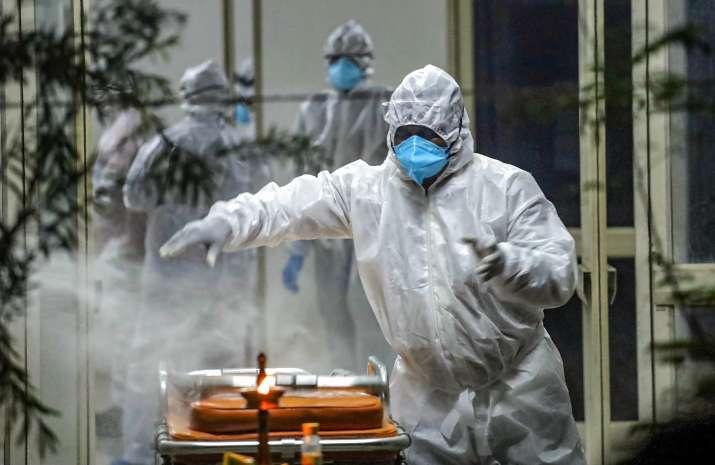 शामली: कोरोना वायरस जांच दल लाठी लेकर टूट पड़ा नशैड़ी, हमले में एक अधिकारी घायल- India TV Hindi
