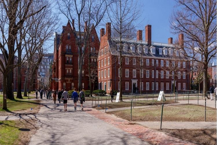 Harvard University- India TV Hindi