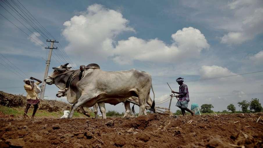 Organic Farming to increase farmers income govt to give grant । यूपी के करोड़ों किसानों की समृद्धि क- India TV Hindi