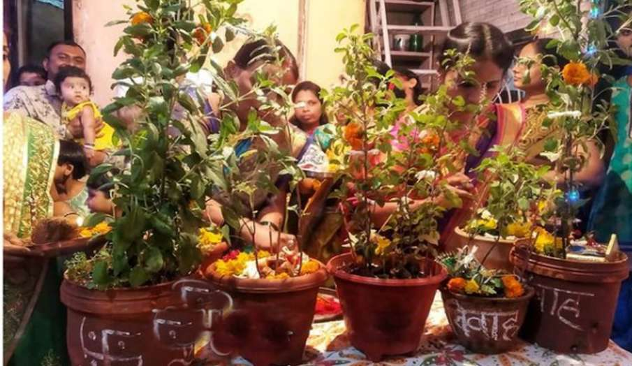 Tulsi Vivah 2020: जानें कब है तुलसी विवाह, जानें शुभ मुहूर्त, पूजा विधि और कथा- India TV Hindi