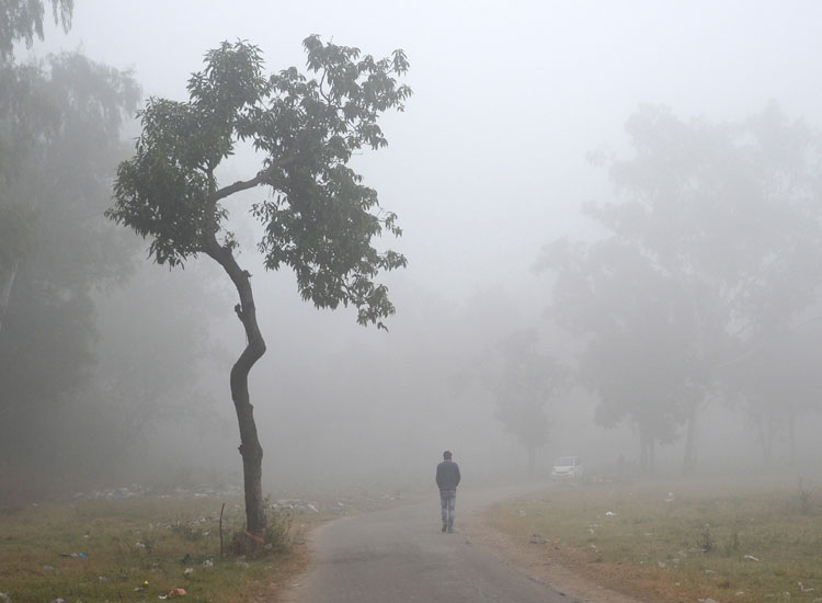 Biting cold grips north India; eight killed in UP...- India TV Hindi