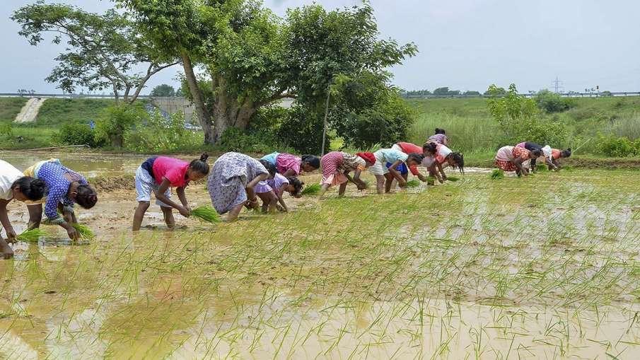 PM Kisan Samman Nidhi uttar pradesh farmers to receive money today । PM Kisan Samman Nidhi: यूपी के - India TV Hindi