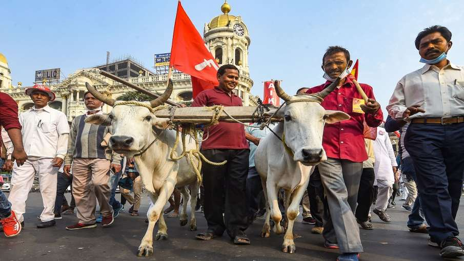 Kisan andolan hindi news modi govt new farm law farmer protest delhi up singhu border live updates। - India TV Hindi