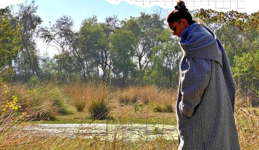 deepika padukone shares ranthambore vacation pics- India TV Hindi