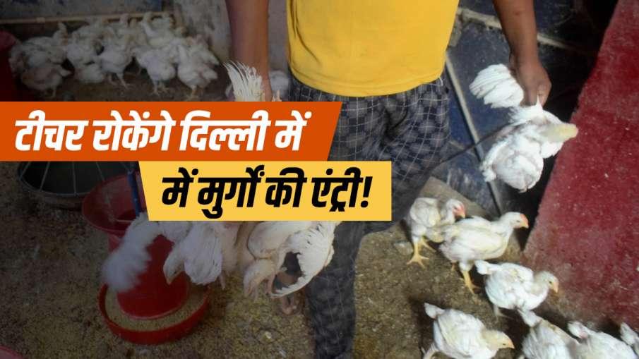 Bird Flu protection in delhi teachers appointed on border protest begins updates दिल्ली में न घुस पा- India TV Hindi