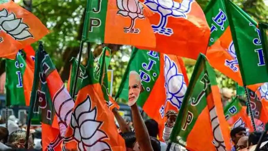 Gujarat Local Body, Gujarat Local Body Elections, Gujarat Local Body Elections Result 2021- India TV Hindi