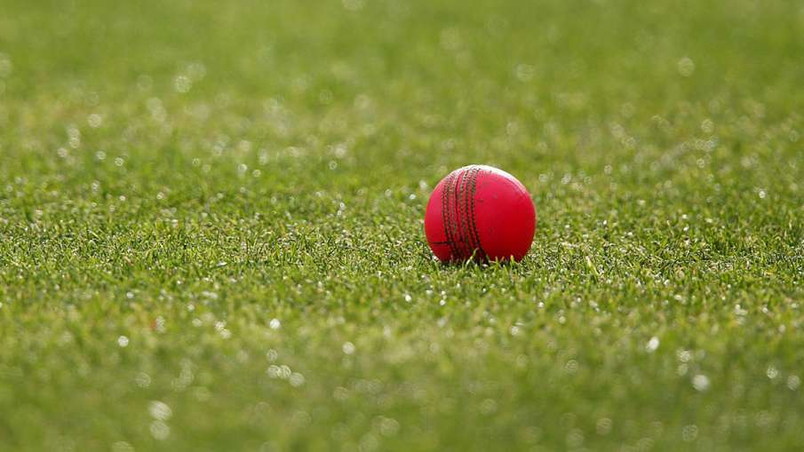 Everyone's eyes will be on SG pink ball in the day-night Test match against England- India TV Hindi