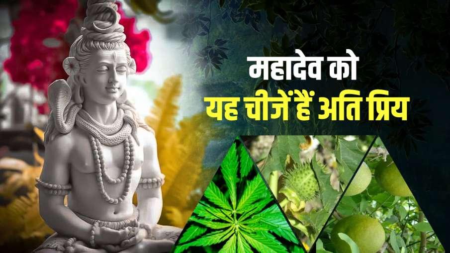 Mahashivratri 2021 these things offered on shivling on shivratri know reason: Mahashivratri 2021: मह- India TV Hindi