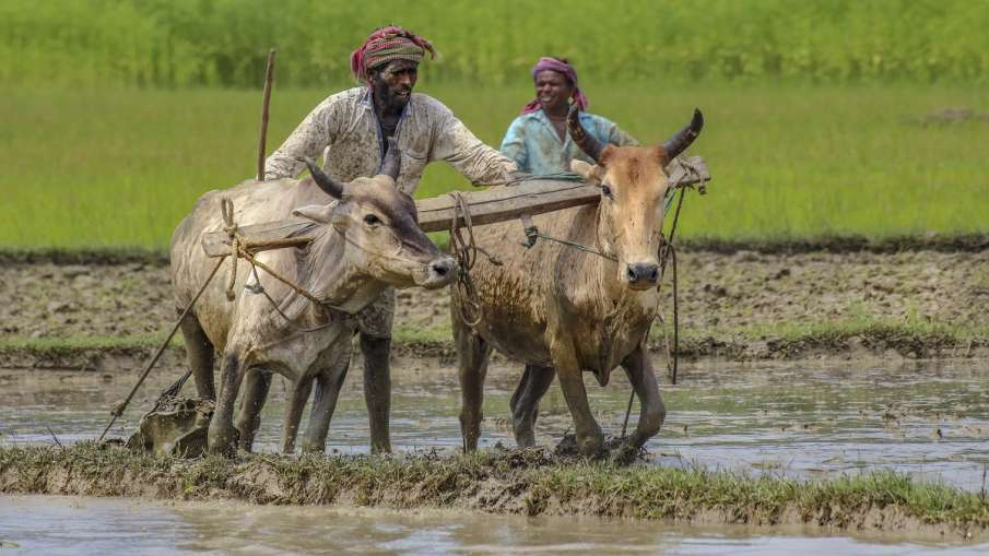 kisan agriculture start up farmer technology narendra modi speech  कृषि क्षेत्र में स्टार्टअप को प्र- India TV Hindi