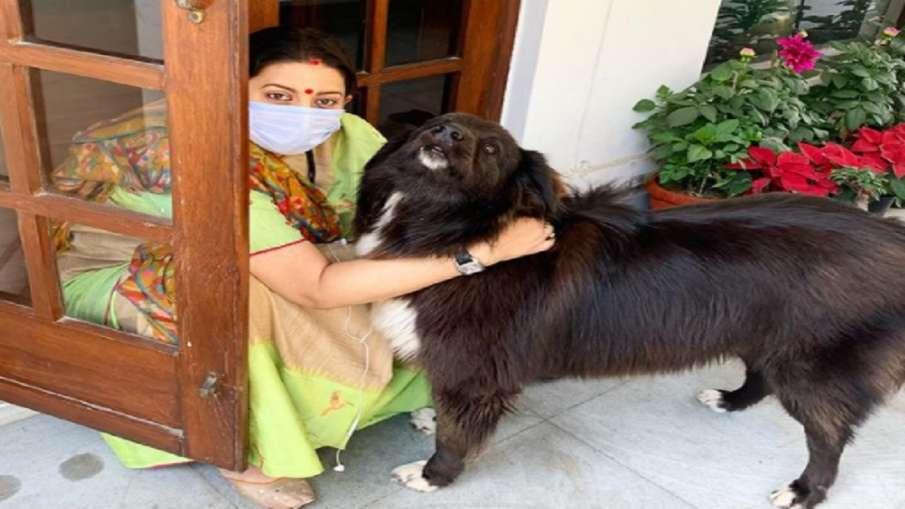 स्मृति ईरानी ने अपने डॉगी के साथ साझा की तस्वीर, लिखी ये बात - India TV Hindi