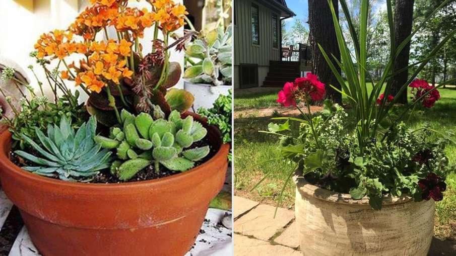 Vastu Tips: घर की दक्षिण-पश्चिम दिशा में रखें इस तरह के मिट्टी से बनीं चीजें, होगा शुभ- India TV Hindi