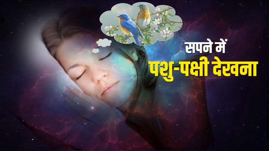 animals and birds - India TV Hindi