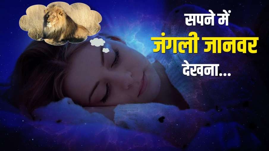 wild animals - India TV Hindi