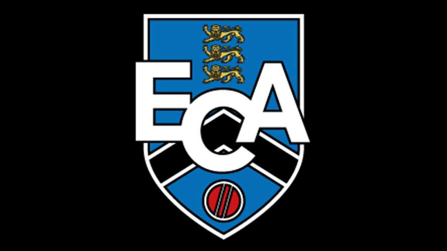 Brett Lee and Pat Cummins the Estonian Cricket Association sent help to India- India TV Hindi