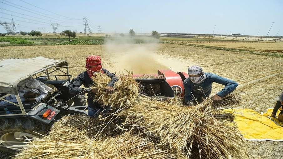 farmer donates daughter's marriage money for purchasing oxygen concentrators Corona: सैल्यूट किसान, - India TV Hindi