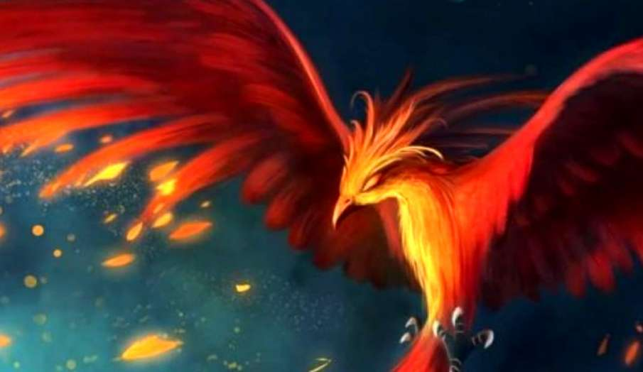 phoenix bird painting benefits placement at home positive energy latest news- India TV Hindi