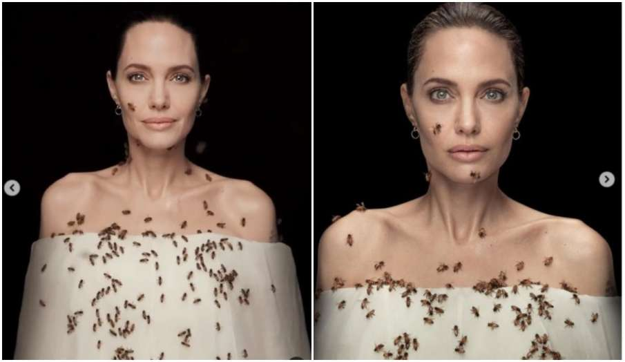 angelina jolie bees photoshoot with bees for 18 mins breaks internet watch viral video - India TV Hindi