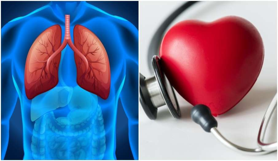 home remedies for healthy lungs and heart - India TV Hindi
