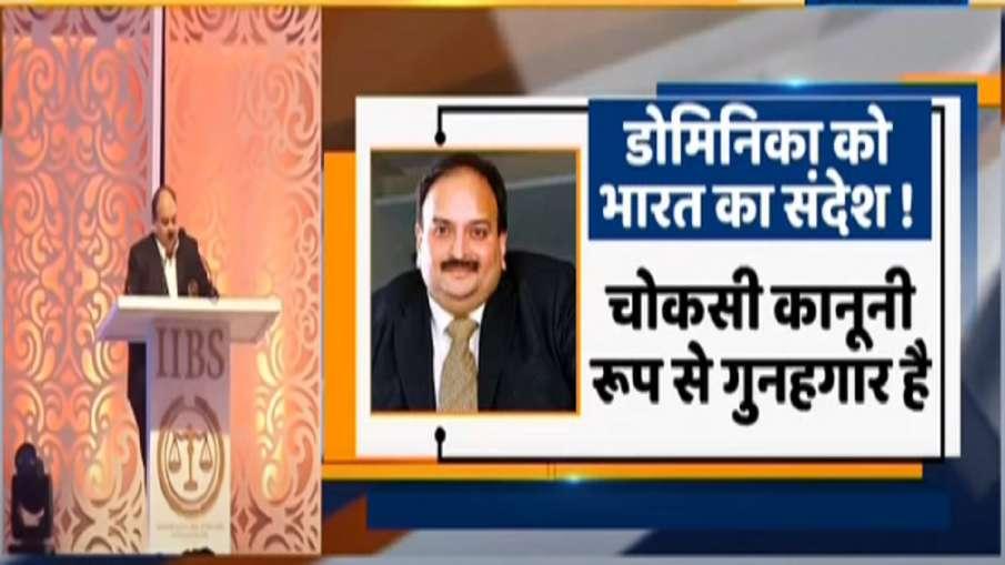 Mehul Choksi India Dominica he committed huge crime चोकसी को लाने की कोशिशें तेज! भारत ने डोमिनिका स- India TV Hindi