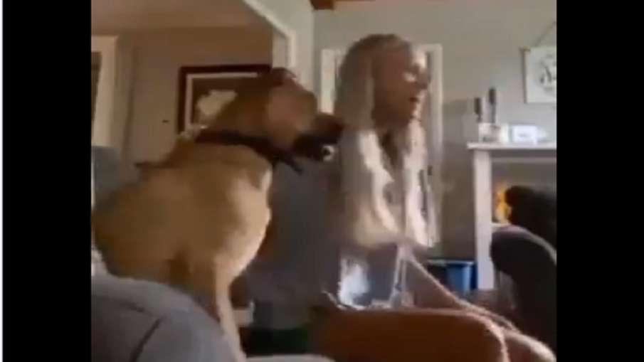 dog viral video- India TV Hindi