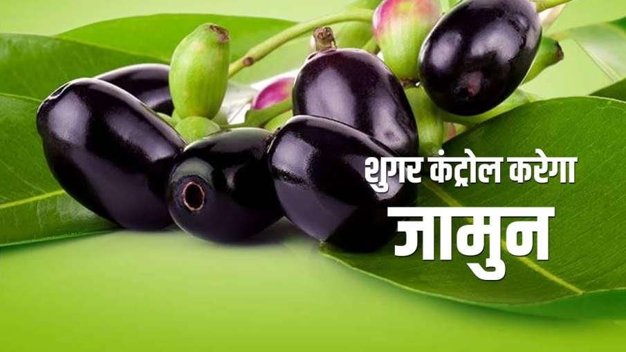 jamun or blackberry- India TV Hindi