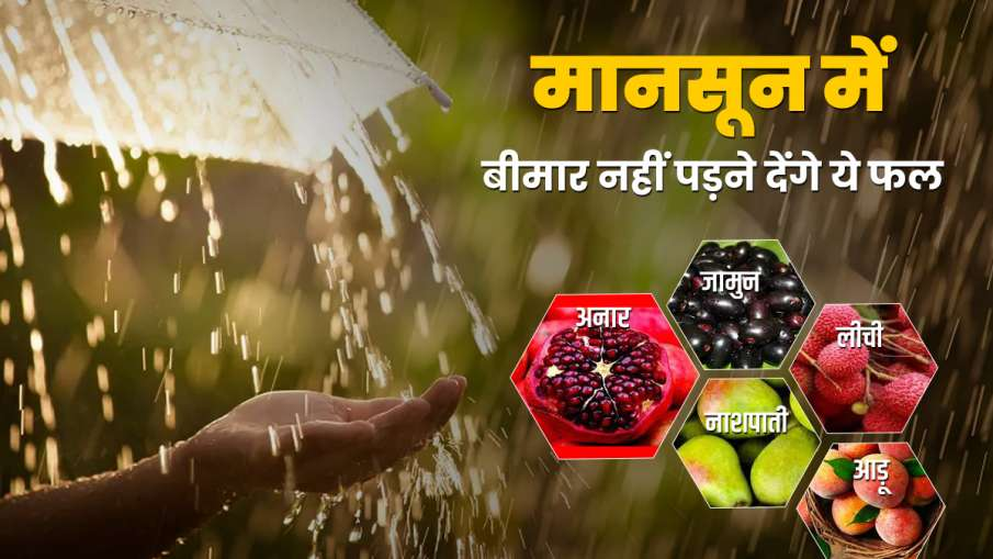 5 fruits strong your immune- India TV Hindi