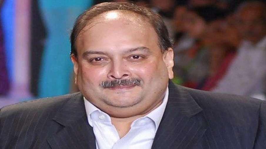 मेहुल चोकसी की जमानत याचिका पर डोमिनिका हाईकोर्ट में सुनवाई 11 जून तक टली- India TV Hindi