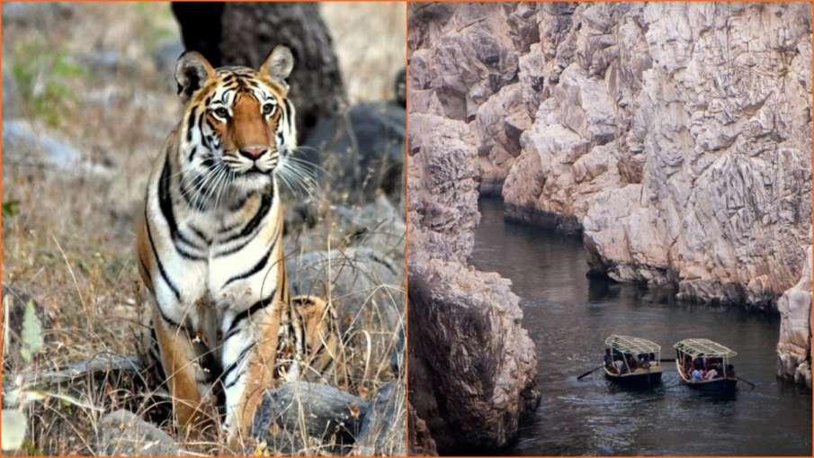 Madhya Pradesh Tourism - India TV Hindi
