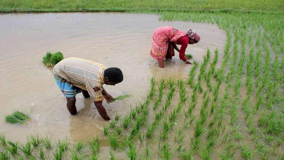 good news for farmers loan waived off in Jharkhand किसानों के लिए खुशखबरी, इस प्रदेश में माफ किए गए - India TV Hindi