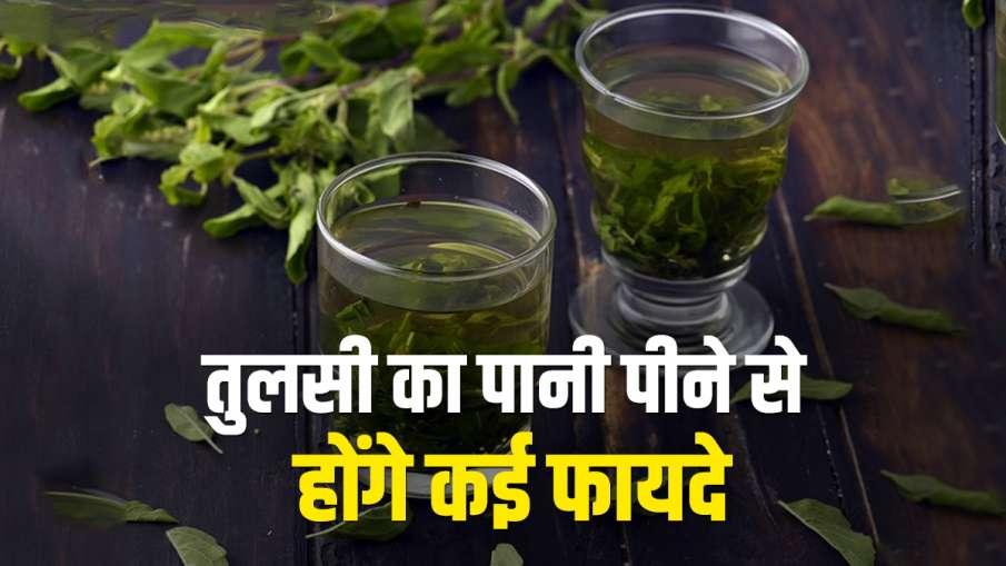 Tulsi water - India TV Hindi
