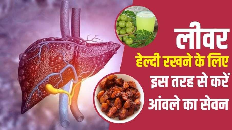 amla - India TV Hindi