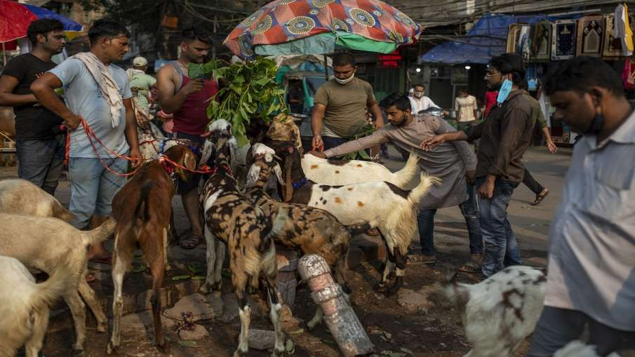 bakrid celebrations uttar pradesh cow camel sacrifice prohibited restrictions on gathering बकरीद पर - India TV Hindi