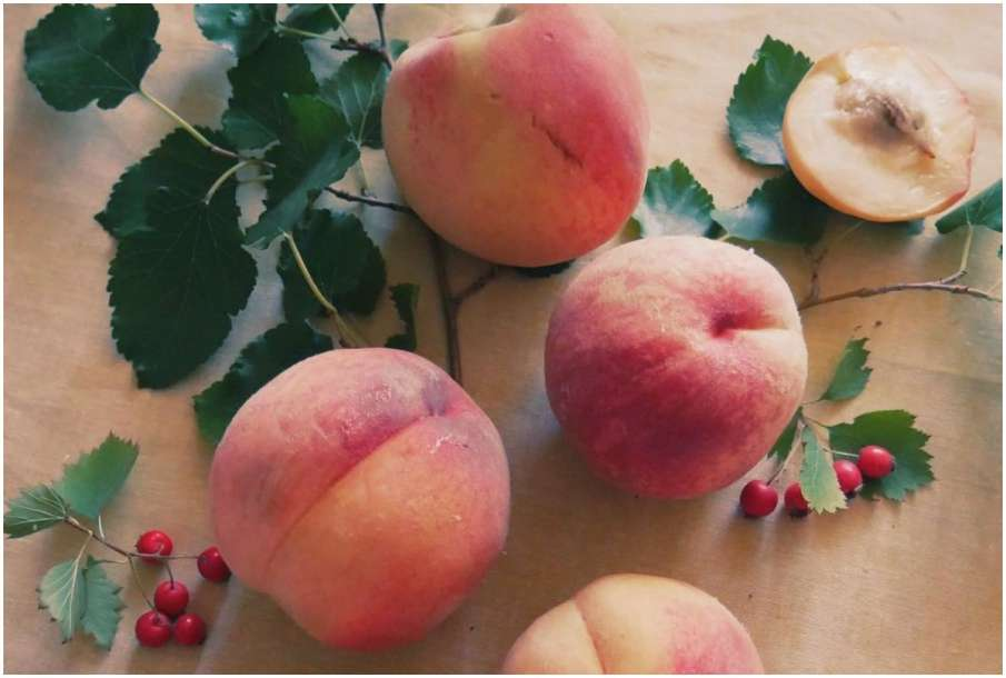 Summer fruit Peach- India TV Hindi