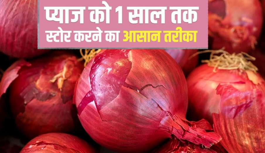 Kitchen Hacks easy ways to store onions at home onion ko store karne ka tarika- India TV Hindi