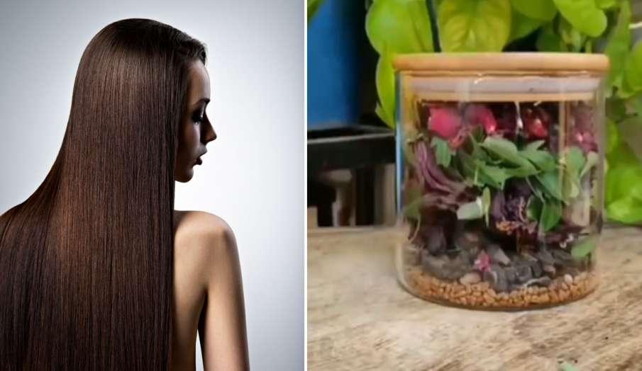 लंबे-घने बालों के लिए सप्ताह में एक बार लगाएं ये हेयर मास्क, हमेशा रहेंगे काले बाल- India TV Hindi