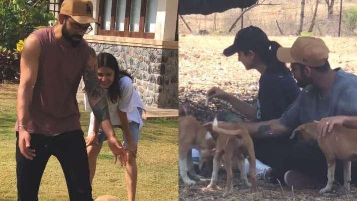 I admire Anushka's dedication towards animal welfare: Virat Kohli- India TV Hindi