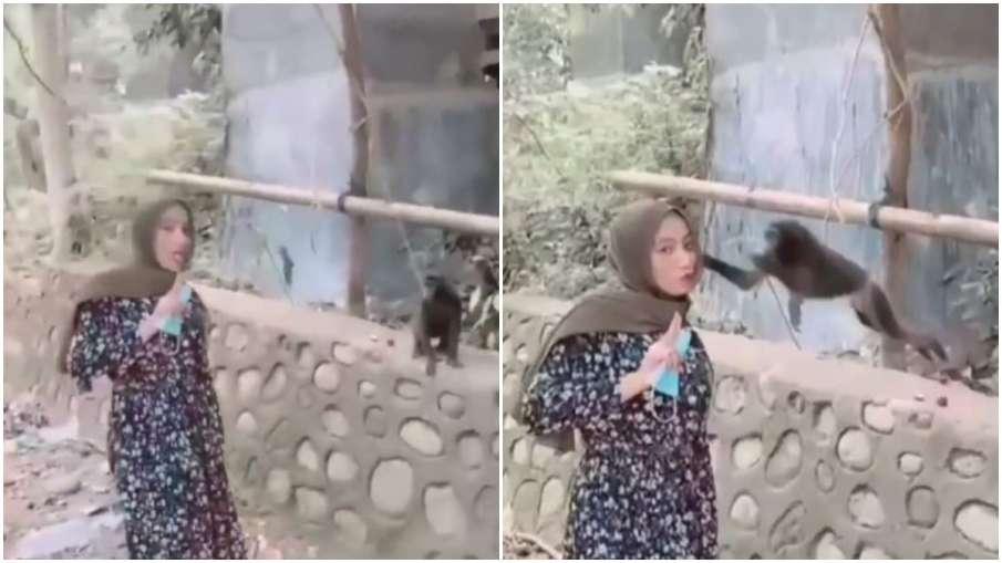 monkey attacks on woman while taking selfie- India TV Hindi